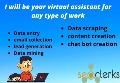 I will provide to your virtual assistant for any type of work