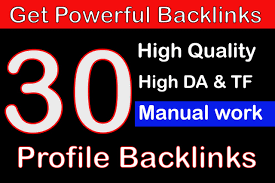 I Will Create 30 Profile High Quality Backlinks