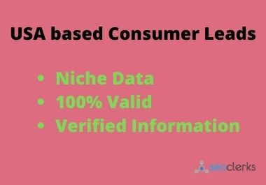 Niche based consumer lead generation expert