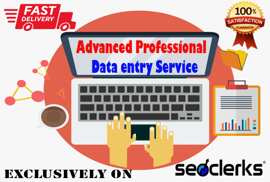 I will provide Advanced Professional Data Entry Service