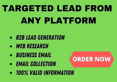 I will do targeted b2b lead generation from any platform
