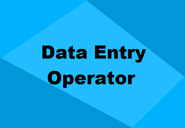 I will provide any kind of data entry work