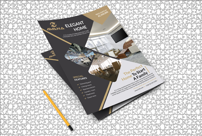 I will do a Professional Flyer, Leaflet, Brochure ro Poster design