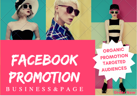 promotion and marketing of your business or product in 1 million facebook group users