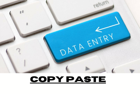 I will do data entry,  copypaste b2b,  b2c lead generation