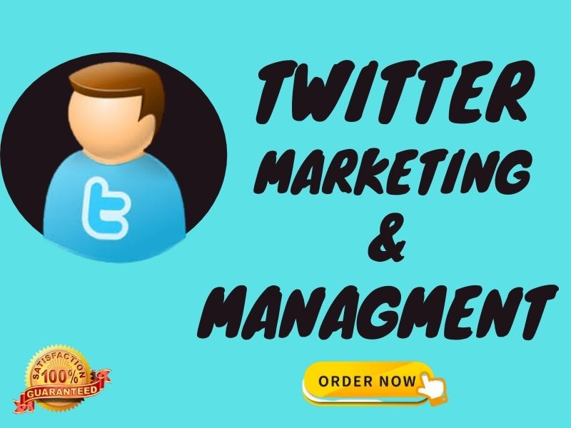 I will create your twitter ads for promotion marketing and advertising