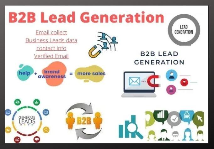 I will provide B2B lead generation