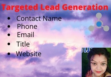 I will do best quality Linkedin Lead Generation