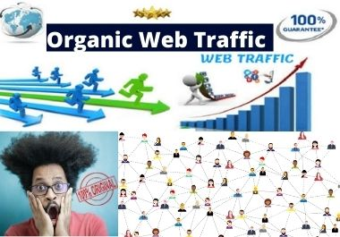Drive Safe & Organic Web Traffic