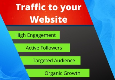I will drive Organic Traffic to your Website.