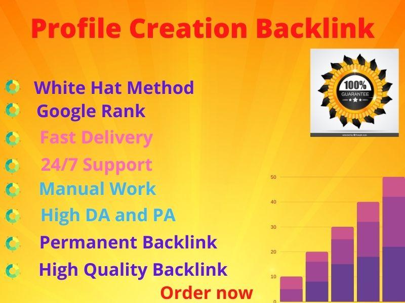 I will Provide 100 High DA and PA SEO Profile Backlinks