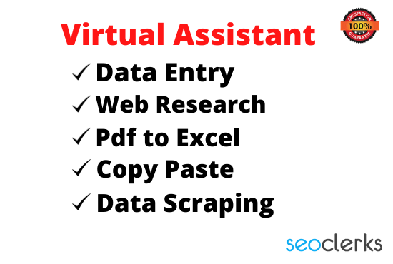 i will be virtual Assistant for data entry and Web Research or copy paste