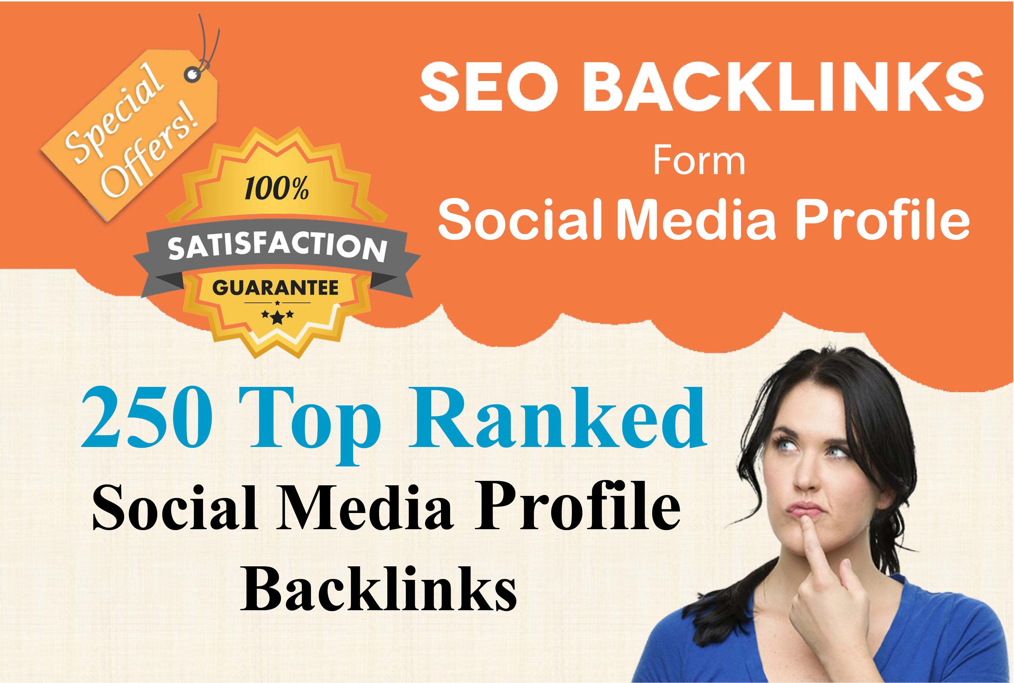 I will create 250 high the social media profiles backlinks