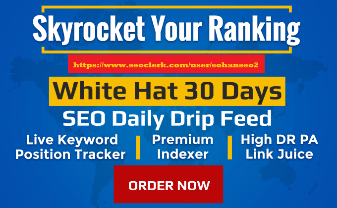 I will skyrocket your website ranking with monthly white hat SEO