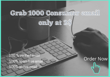 I will provide 1000 fully verified Consumer email