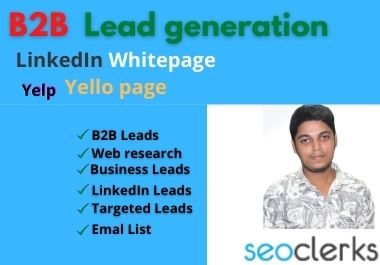 I will do b2b lead generation and web research for your business