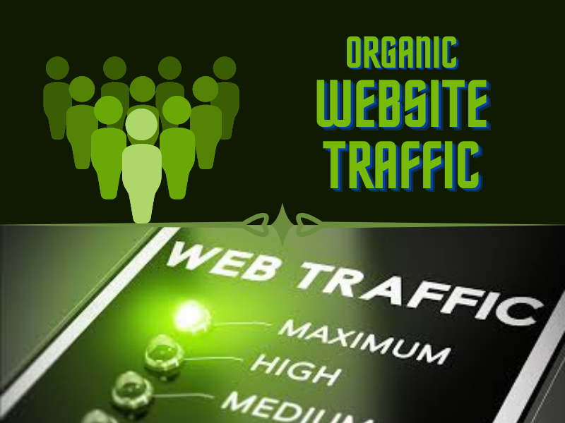 I will provide direct real targeted 500 web traffic visitors per day for you