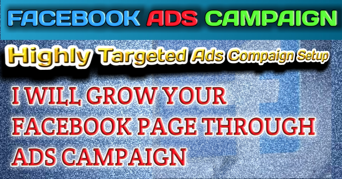I will run a facebook ad campaign to grow your page