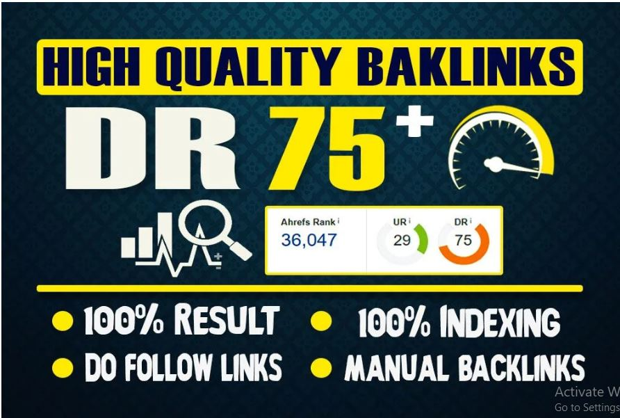 I will make 10 DR 70+ permanent homepage pbn backlinks