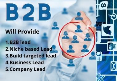 I will provide you 100 targeted b2b niche based lead