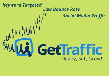 I will bring real visitor's & organic targeted traffic