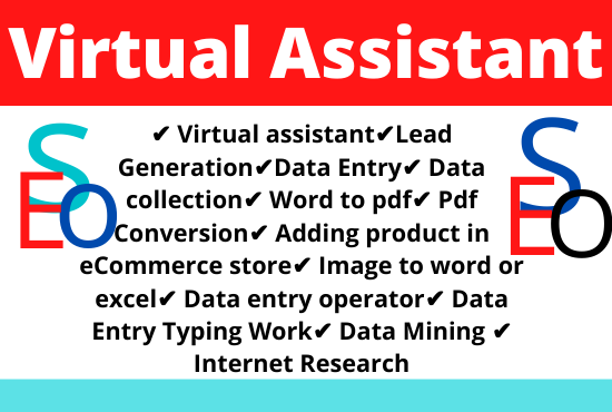 I will be Your Virtual Assistant For Data Entry And Lead Generation