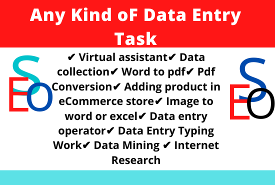 I Will Do Any Kind of Data Entry Task