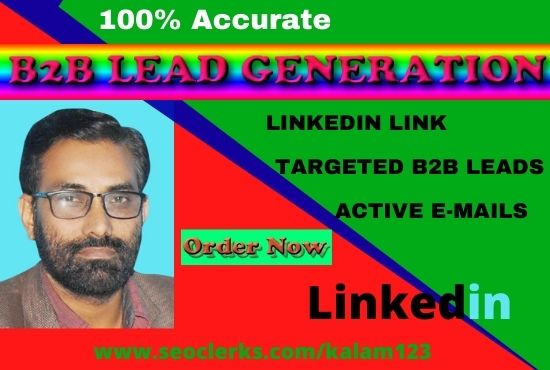 I will promote B2b lead generation and web research