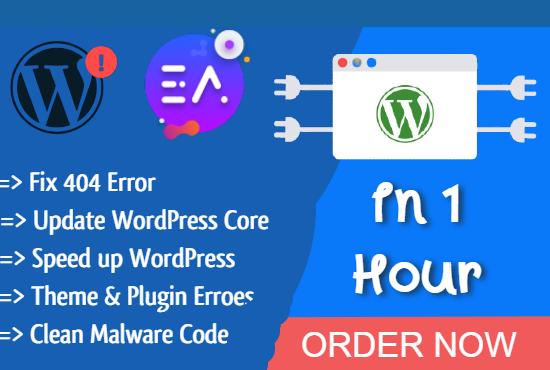 I will fix your wordpress website bug or errors