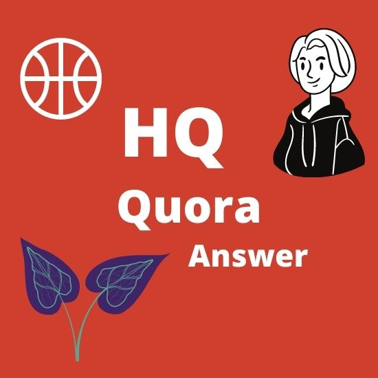 I will you provide you 10 High Quality Quora Answer with your keywords and URL