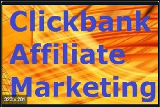 I will drive active traffic to clickbank,  affiliate link promotion