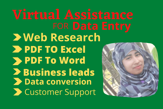 I will be your Virtual Assistance for data entry work