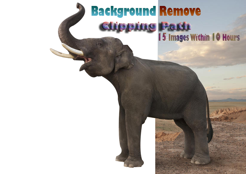 I will do fast delivery background remove clipping path 15 images