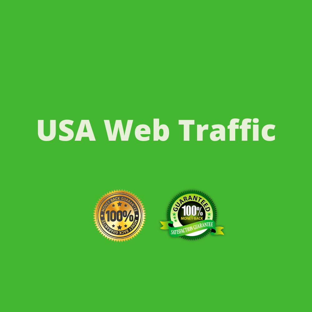 I will drive 1000 USA traffic for your website