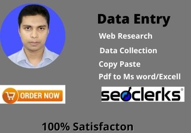 I can do any kind of data entry,  copy paste,  web research