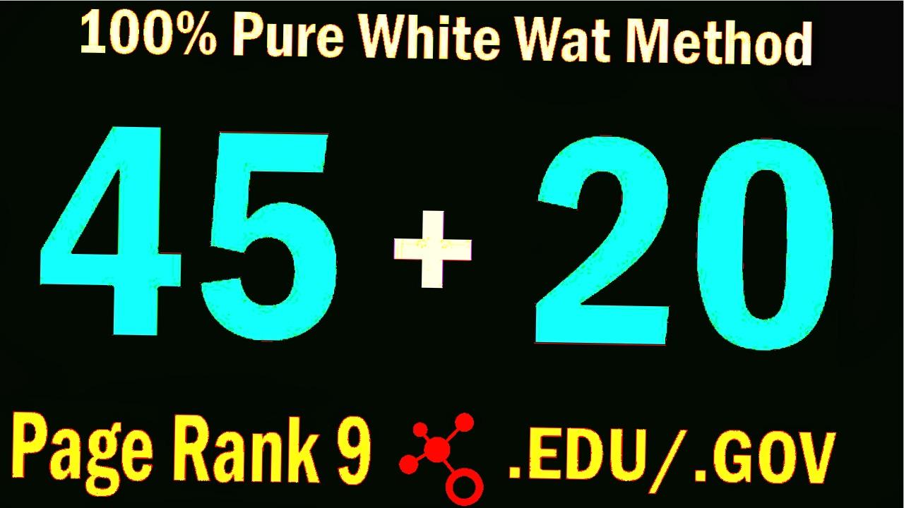 Manually Do 45 PR9 + 20 EDU. Gov Backlinks from High DA80+ - Skyrocket your Google RANKINGS