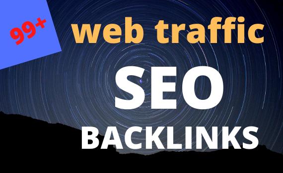 I will USA 100 web traffic SEO backlinks us long visit 2 min