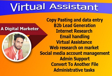 I will be your expert and professional virtual assistant