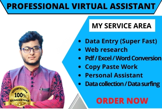I will be your Professional & Expert virtual assistant