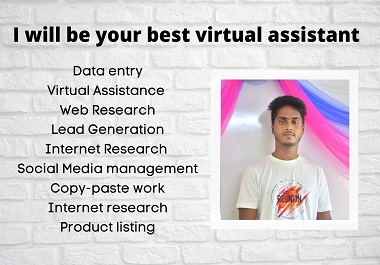 I will be your virtual assistant for any kind of tasks