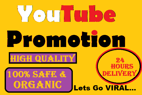 Do Professional YouTube Promotion with guaranteed results