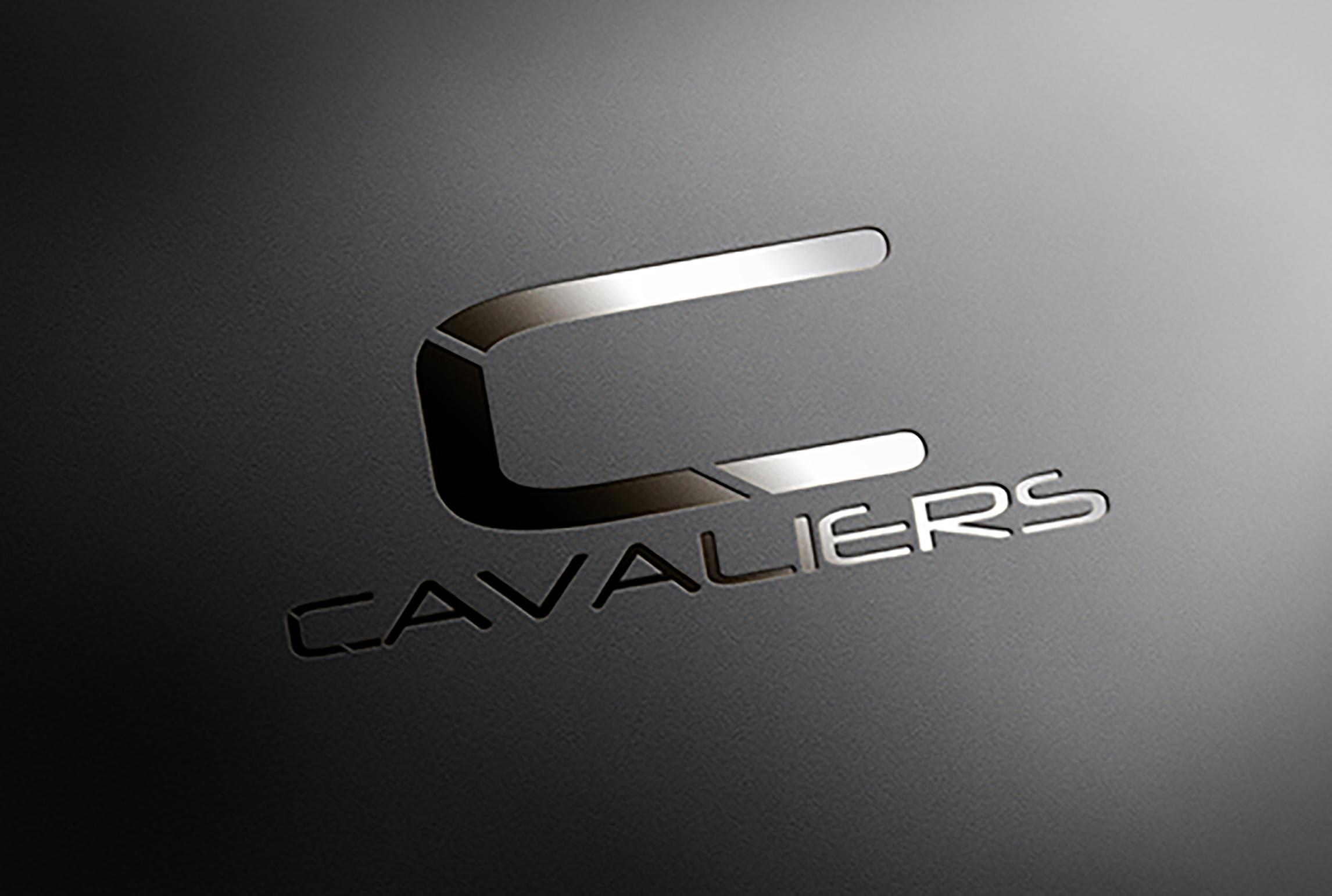 I will craft a professional modern, clean, minimalist business logo