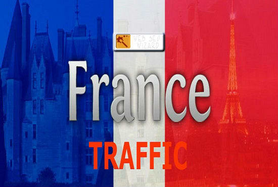 Drive 6000 Real france website traffic for 15 days
