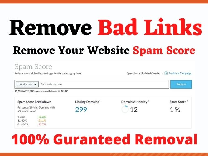 I will disavow bad backlinks and remove your website moz spam score