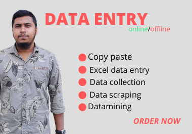 I will do data entry,  copy paste,  web research,  web scraping,  data mining and excel data entry