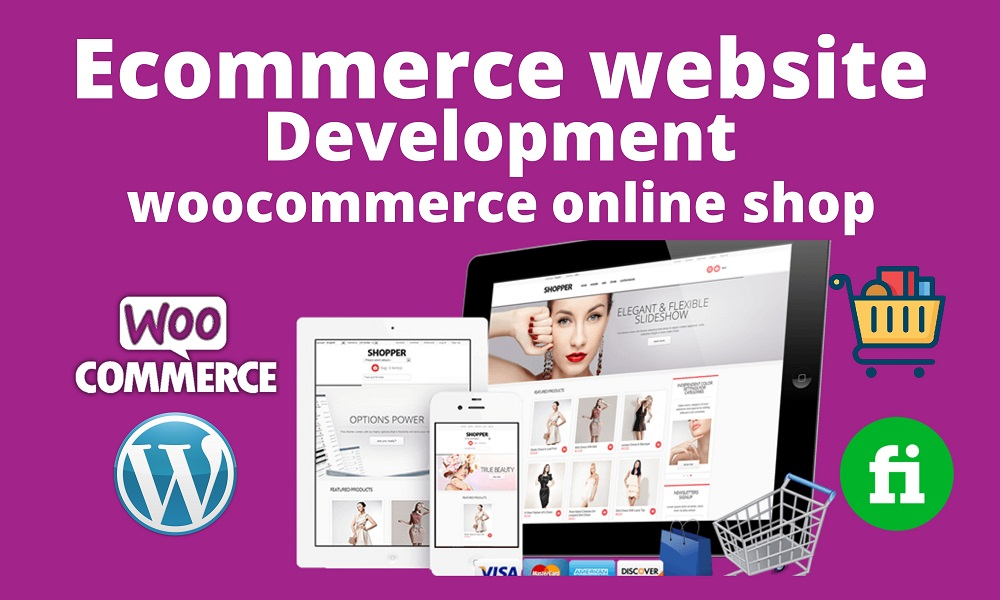 I will Build Professional WordPress website or ecommerce website