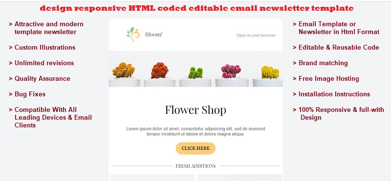 I will design responsive HTML coded editable email template