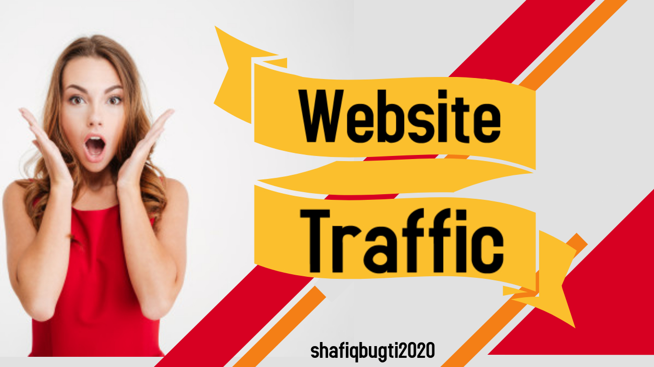 300000 real website traffic visitors from worldwide
