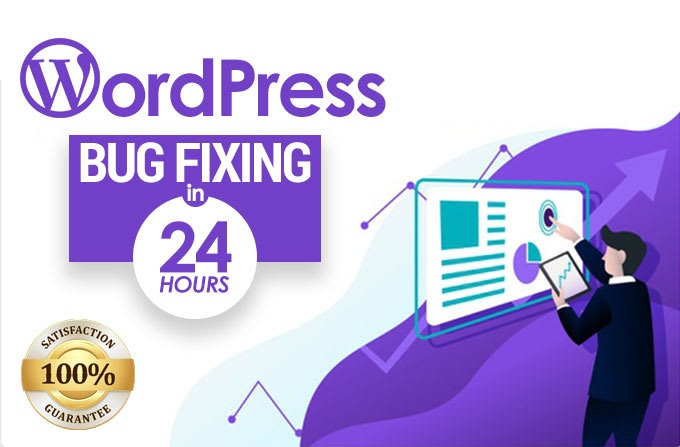 I will fix wordpress issues,  bugs in 24 hours