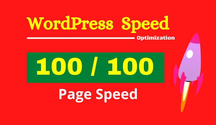 I will do wordpress website speed optimization for google pagespeed and gtmetrix